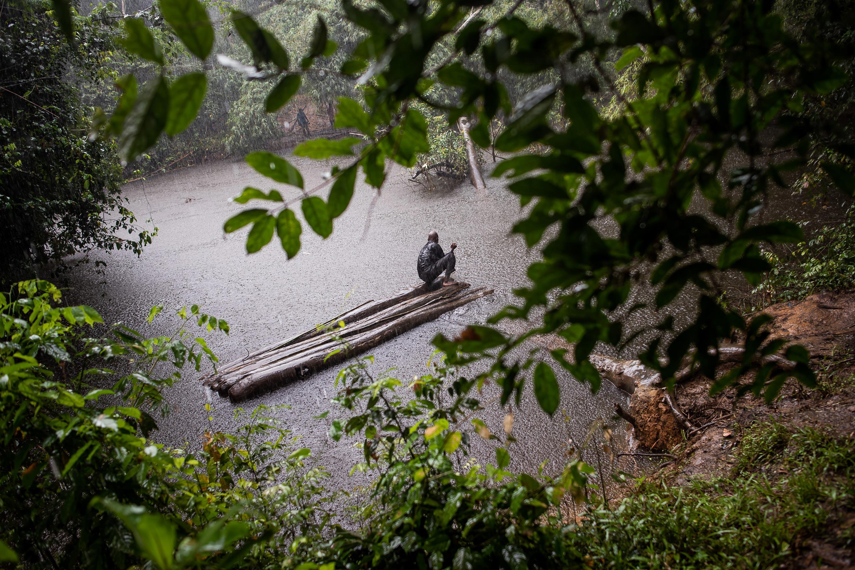 Tea & Water Pictures: Philip Hatcher-Moore 7
